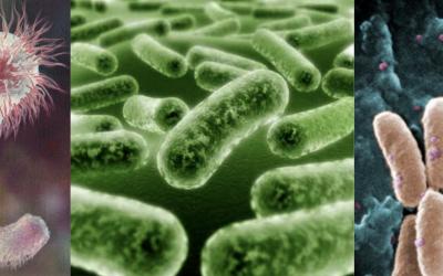 ¿Sabes cómo prevenir una infección de vías urinarias?