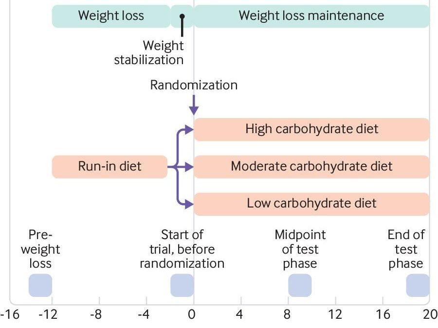¿Una dieta baja en carbohidratos ayuda a mantenerse y no volver a subir de peso?